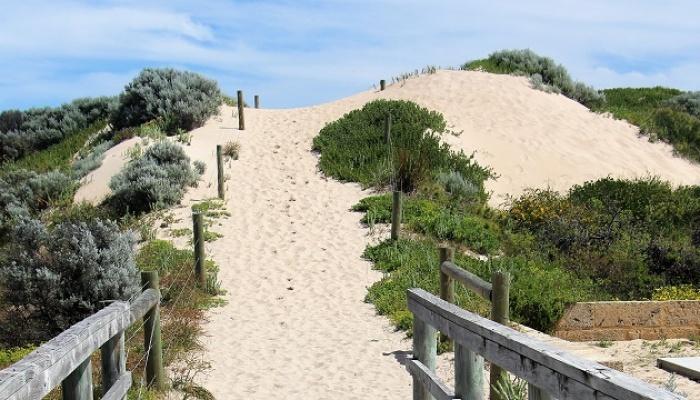 Fine Tune Fitness Sand Dune